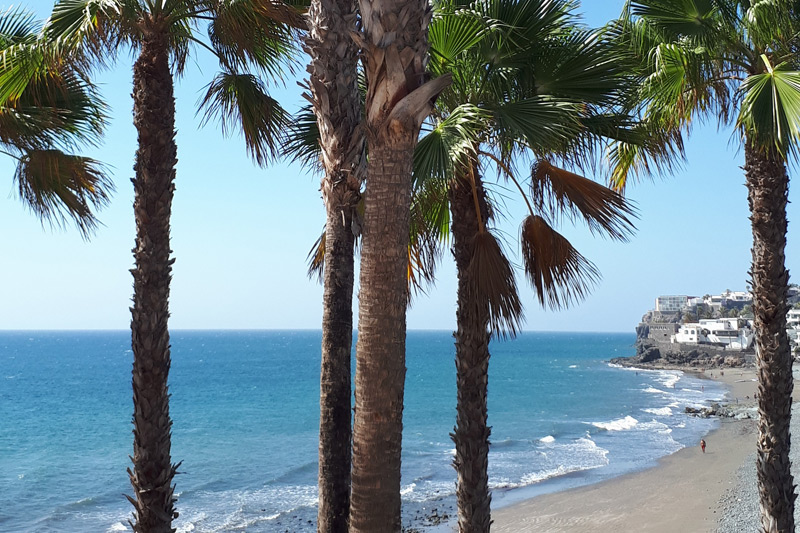 Playa de Aguila