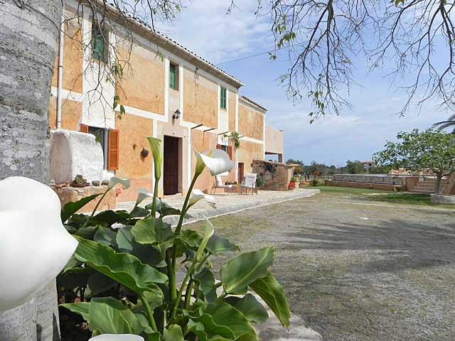 Ferienhaus Calonge Garten