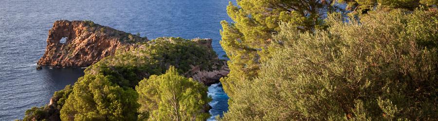 Mallorca im August