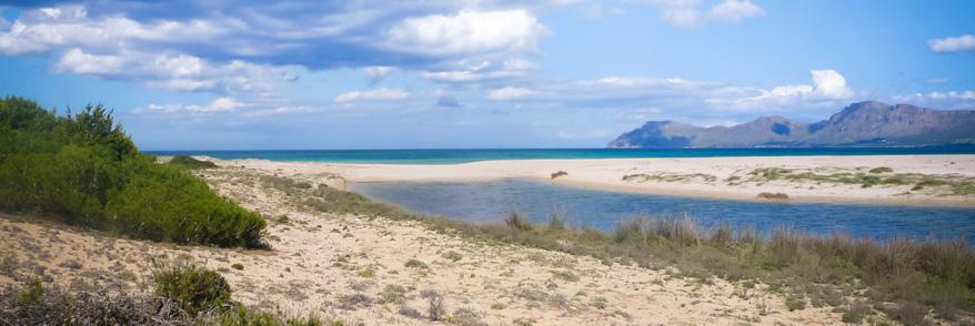 Strand und Meer bei Son Serra de Marina
