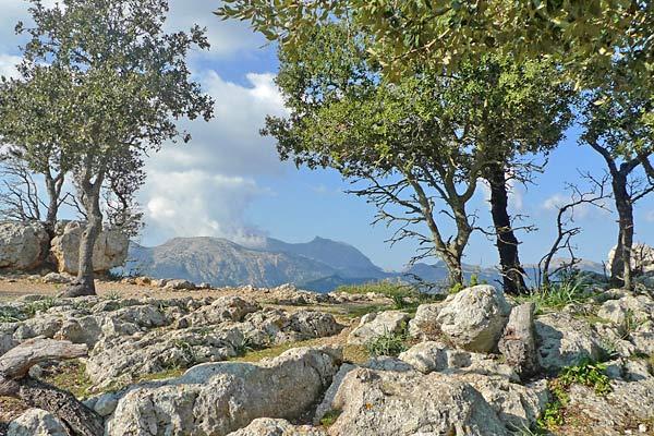 Wanderweg in Richtung Castell d Alaro