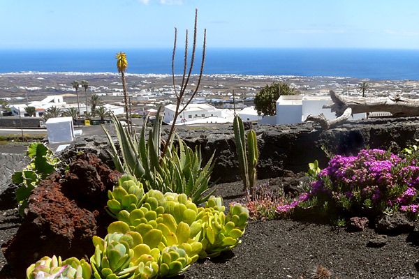 Meerblick auf Lanzarote