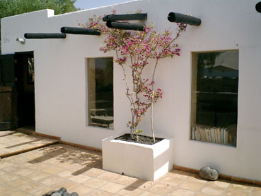 Ferienhaus osana bei tias auf lanzarote mit internet for Schlafzimmer lila gra n