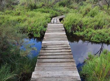 Albufera Park Mallorca